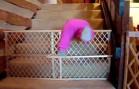 Mission Impossible: Babies Escape